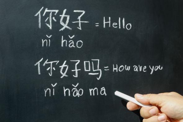 chinese enrichment classes for students